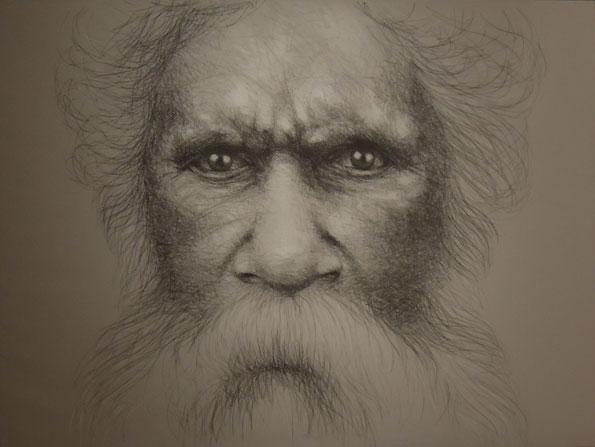darwin und der darwinismus beck